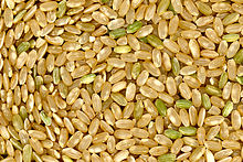 220px-Brown_rice