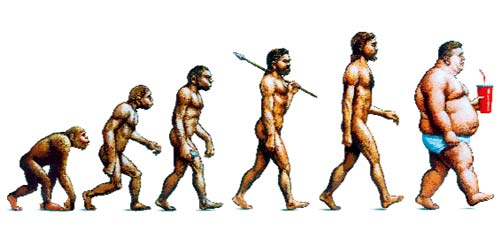 fat_evolution